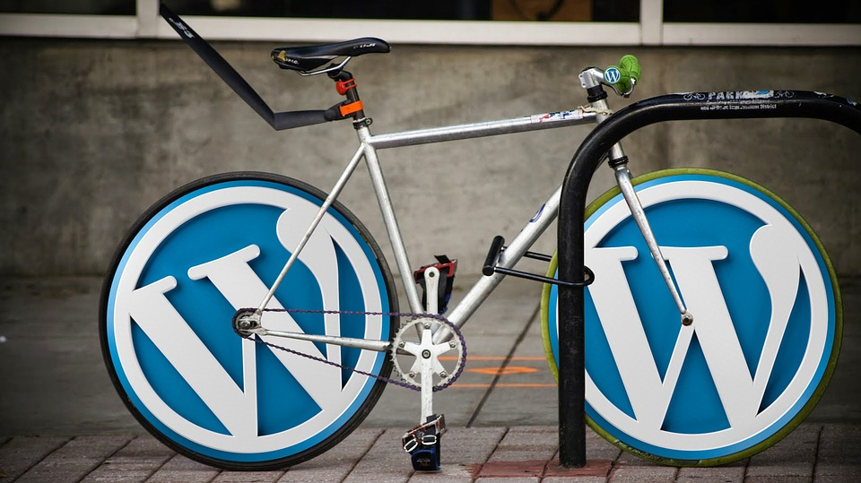 WordPress For Beginners