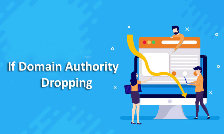 Domain-Authority-Dropping